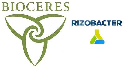 Bioceres compra una participaci�n mayoritaria de Rizobacter
