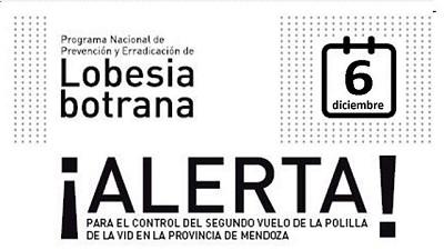 Valle de Uco: Segundo alerta para el control de la polilla de la vid