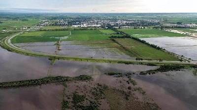 La tonelada de soja se acerc� a USD 400 ante el avance de las inundaciones en Argentina