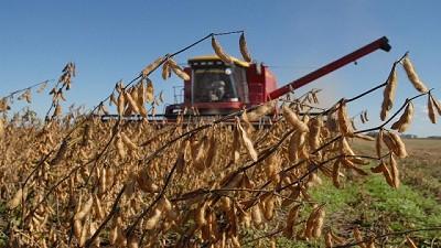 Se espera para la soja una producci�n de 54.8 millones de toneladas