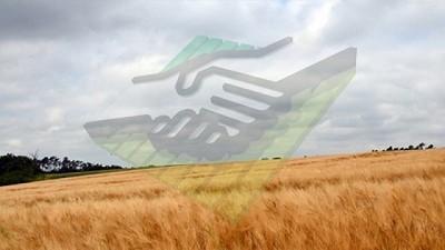 Clima: �contin�a el ambiente agobiante� � CCA/Agrositio