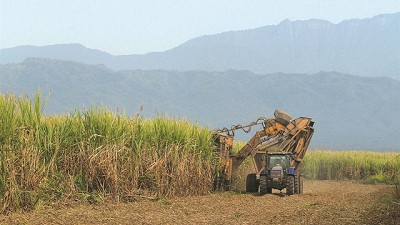Boom de exportaciones de az�car: subieron 211% en volumen