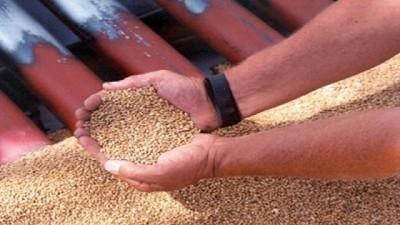 El INASE renueva el convenio con la Bolsa de Cereales
