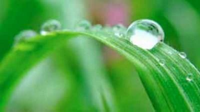 Registro de lluvias caídas el 11 y 12 de Octubre